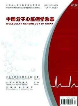 中国分子心脏病学杂志