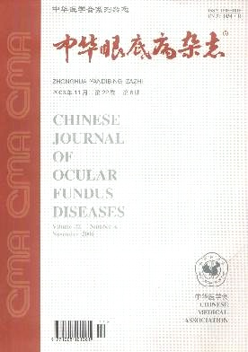 中华眼底病杂志