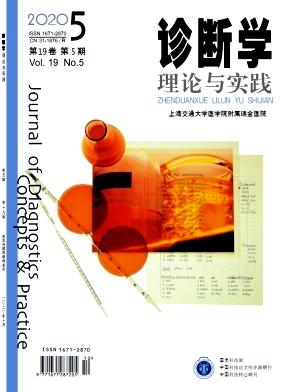 诊断学理论与实践