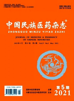 中国民族医药杂志