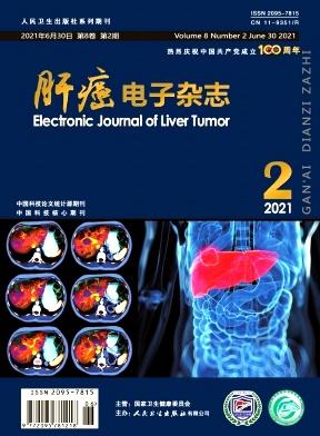 肝癌电子杂志